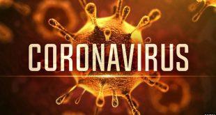 Dịch cúm do virus nCoV-Corona2019